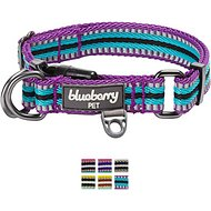 Blueberry Pet 3M Reflective Multi-Colored Stripe Dog Collar, Violet & Celeste, Large