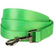 Blueberry Pet Classic Solid Dog Leash, 5-ft, 3/4-in, Neon Green