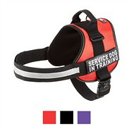 Doggie Stylz Service Dog In Training Harness, Red, XX-Large