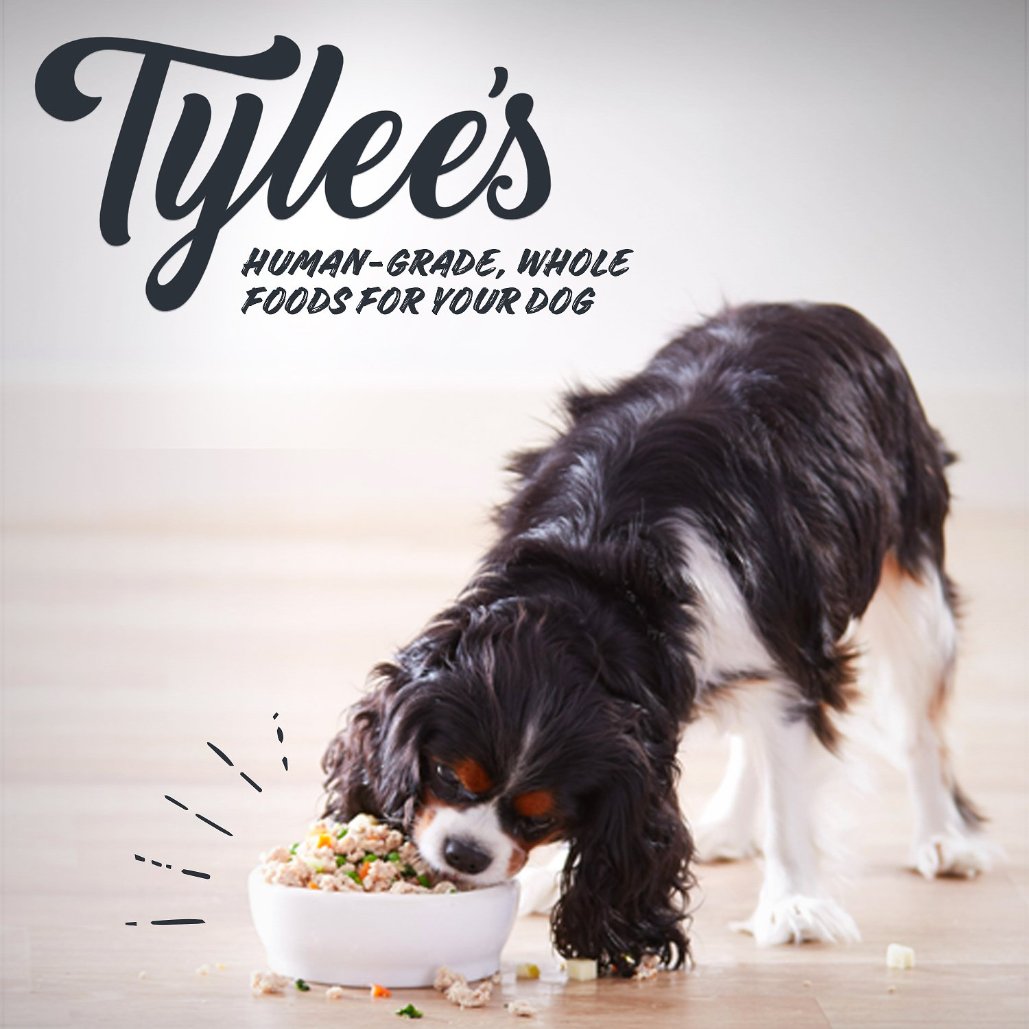 Tylee S Beef Recipe Human Grade Dog Food