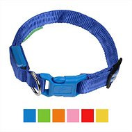 Illumiseen LED USB Rechargeable Dog Collar, Blue, Medium