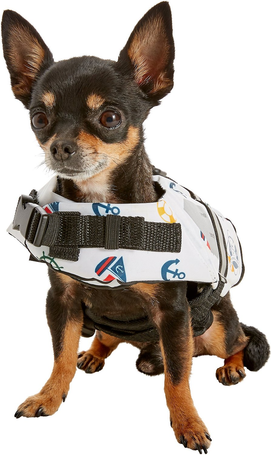Paws Aboard Nautical Dog Life Jacket, XX-Small - Chewy.com