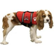 Paws Aboard Lifeguard Neoprene Dog Life Jacket, X-Small