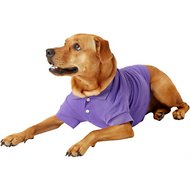 Zack & Zoey Polo Dog & Cat Shirt, Purple, Medium