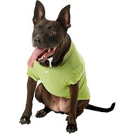 Zack & Zoey Polo Dog & Cat Shirt, Green, Large