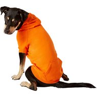 Zack & Zoey Basic Dog & Cat Hoodie, Orange, Large