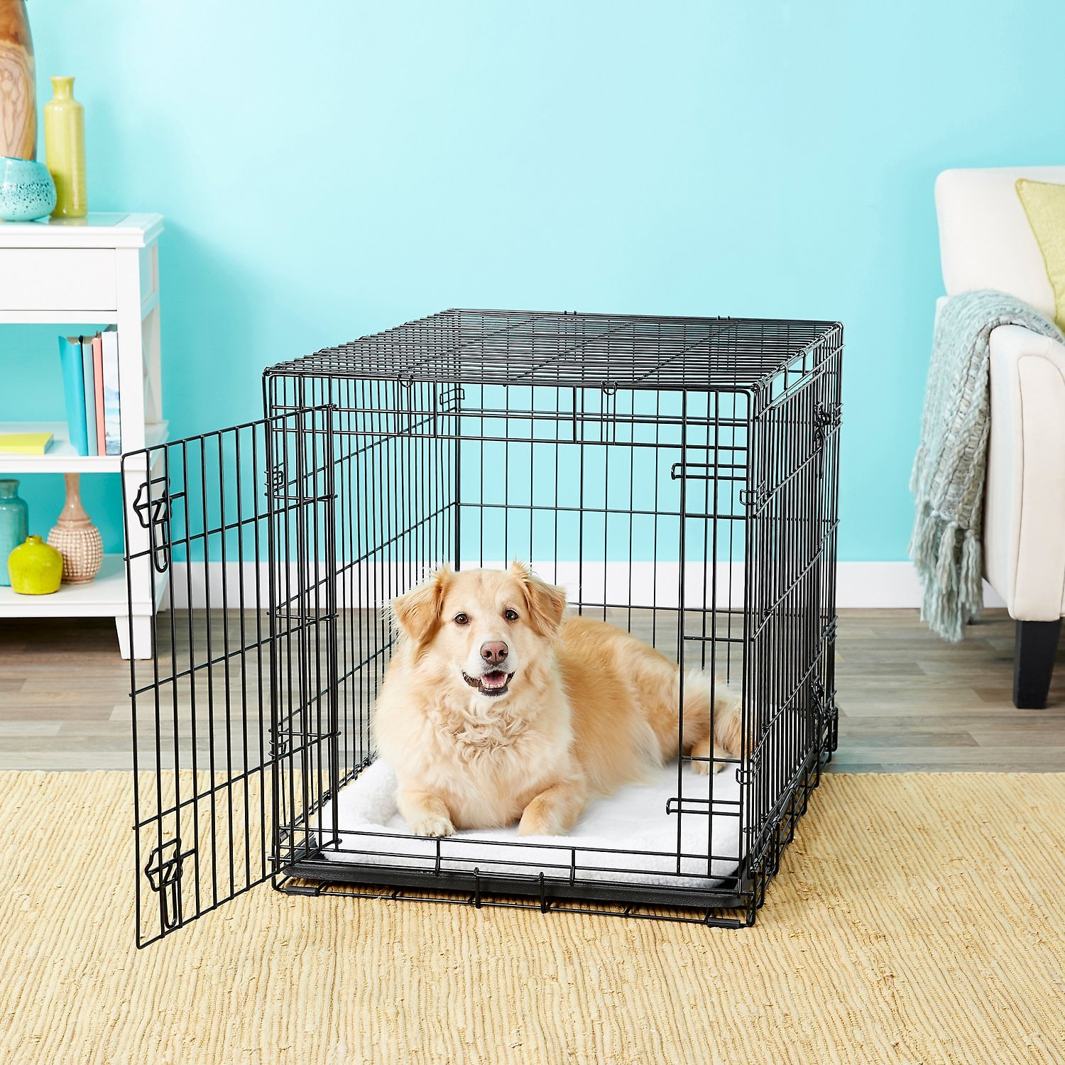 Frisco Heavy Duty Double Door Dog Crate 36 In Chewy