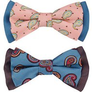 Blueberry Pet Handmade Paisley Fave Dog & Cat Bow Tie Set in Gift Box, 2 count
