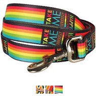 Blueberry Pet Patterned Dog Leash, Rainbow Stripes, 6-ft, 5/8-in