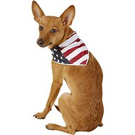 Healers Spot-Lite LED Lighted Dog Bandana, Small, Flag