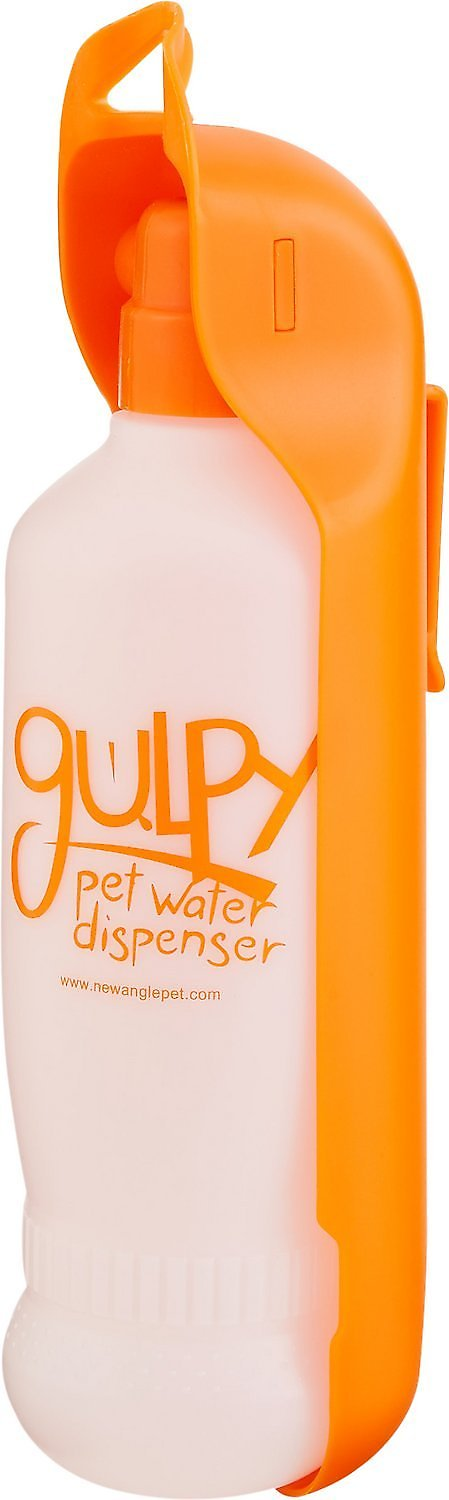 Portable Dog Water Bottle >> Gulpy H2O to Go Portable Pet Water Dispenser, Color Varies, 20-oz bottle - Chewy.com