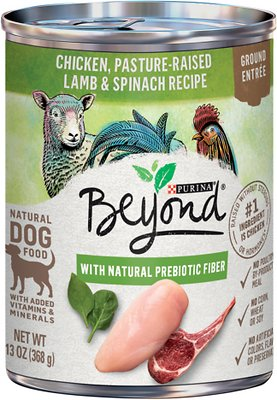 Purina Beyond Grain-Free Chicken, Lamb & Spinach Recipe Ground Entree Canned Dog Food, 13-oz, case of 12
