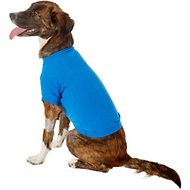 Zack & Zoey Basic Dog T-Shirt, Medium, Blue