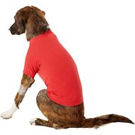 Zack & Zoey Basic Dog T-Shirt, Medium, Red