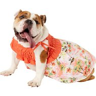 Casual Canine Hawaiian Breeze Dog Sundress, Medium