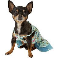 Zack & Zoey Sun & Sea UPF40 Dog Dress, XX-Small