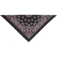 Top Performance Paisley Dog & Cat Bandana, Red/Black