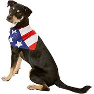 Dog Fashion Living American Flag Dog & Cat Bandana
