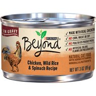 Purina Beyond Chicken, Wild Rice & Spinach Recipe in Gravy Canned Cat Food, 3-oz, case of 12