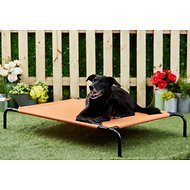 Frisco Steel-Framed Elevated Pet Bed, Terracotta, Large