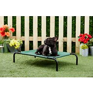 Frisco Steel-Framed Elevated Pet Bed, Green, Small