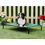 Frisco Steel-Framed Elevated Pet Bed, Green, Medium