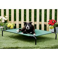 Frisco Steel-Framed Elevated Pet Bed, Green, Large