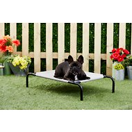 Frisco Steel-Framed Elevated Pet Bed, Gray, Small