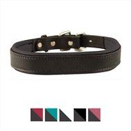 Perri's Black Padded Leather Dog Collar, Black, Large