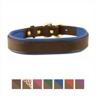 Perri's Havana Padded Leather Dog Collar, Blue, Large