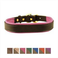 Perri's Havana Padded Leather Dog Collar, Large, Pink