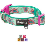 Blueberry Pet Paisley Print Dog Collar, Emerald Green, Medium