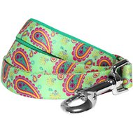 Blueberry Pet Paisley Print Dog Leash, 5-ft, 5/8-in, Emerald Green