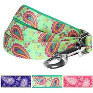 Blueberry Pet Paisley Print Dog Leash, 5-ft, 3/4-in, Emerald Green