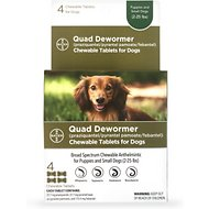 Bayer Quad Small Dog De-Wormer, 4-count