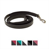 Perri's Padded Leather Dog Leash, Standard, Black