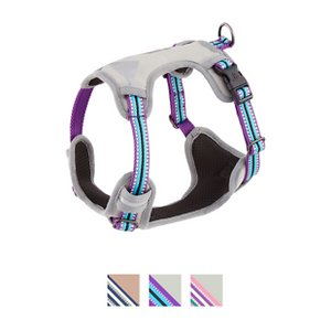 Blueberry Pet 3M Multi-Colored Stripe Mesh Reflective Back Clip Dog Harness