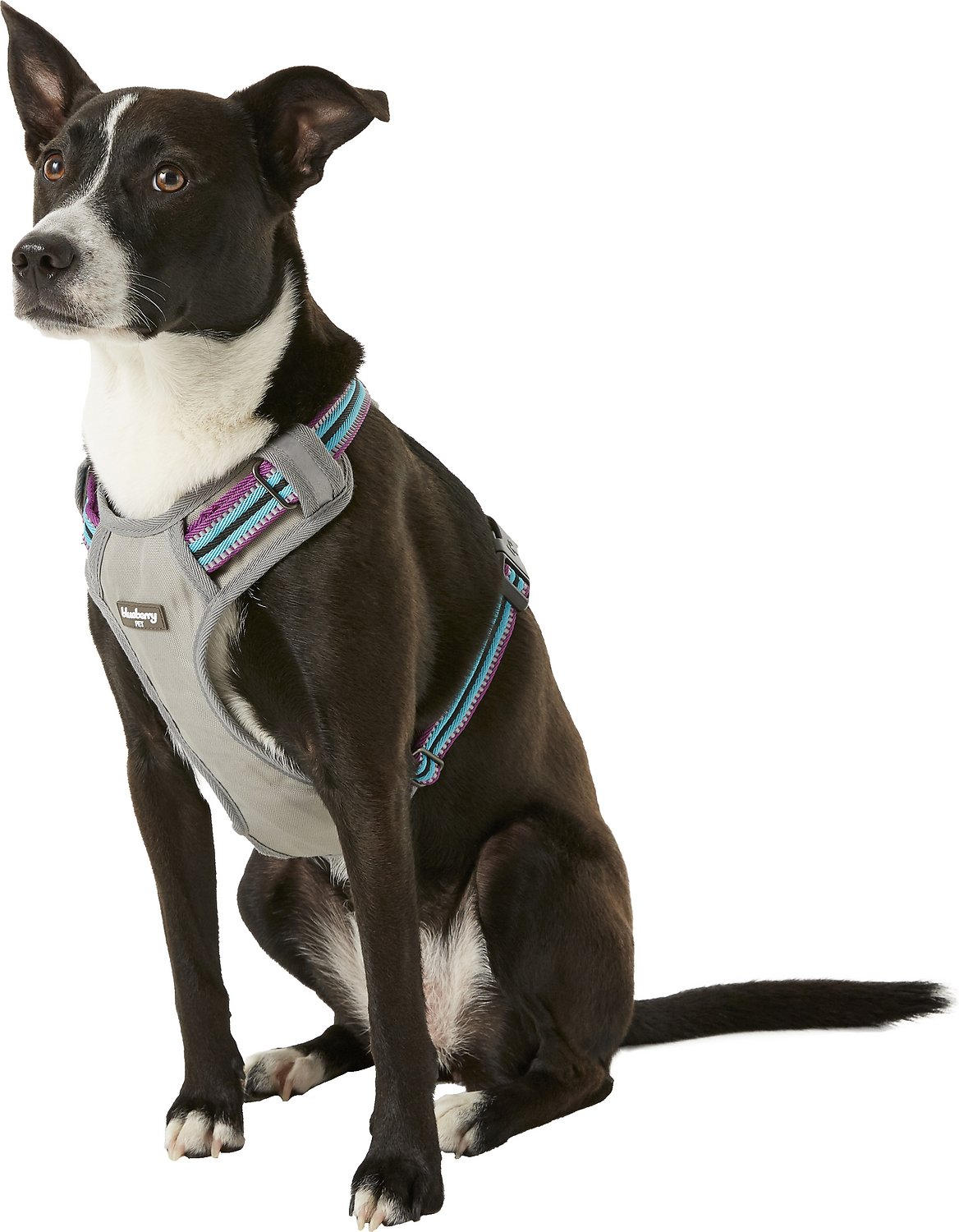 Blueberry Pet 3m Reflective Multi Colored Stripe Padded