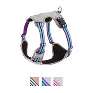Blueberry Pet 3M Reflective Multi-Colored Stripe Padded Dog Harness, Violet & Celeste, Large