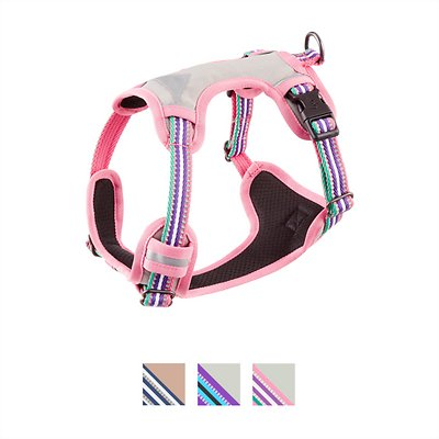 Blueberry Pet 3m Reflective Multi Colored Stripe Padded Dog Harness