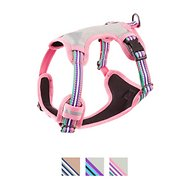 Blueberry Pet 3M Reflective Multi-Colored Stripe Padded Dog Harness, Emerald & Orchid, Small