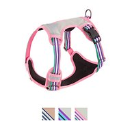 Blueberry Pet 3M Reflective Multi-Colored Stripe Padded Dog Harness, Emerald & Orchid, Medium