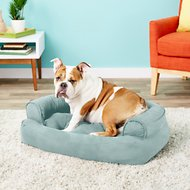 Snoozer Pet Products Luxury Overstuffed Dog & Cat Sofa, Aqua, Small