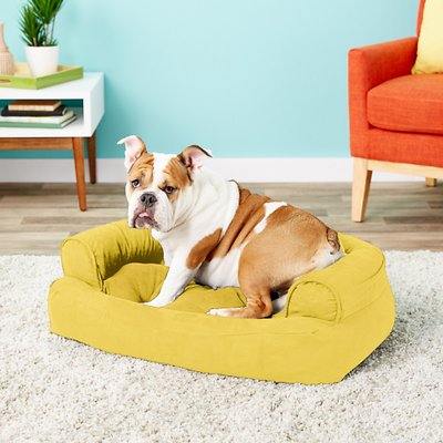 Snoozer Pet Products Luxury Overstuffed Cat & Dog Bed w/Removable Cover