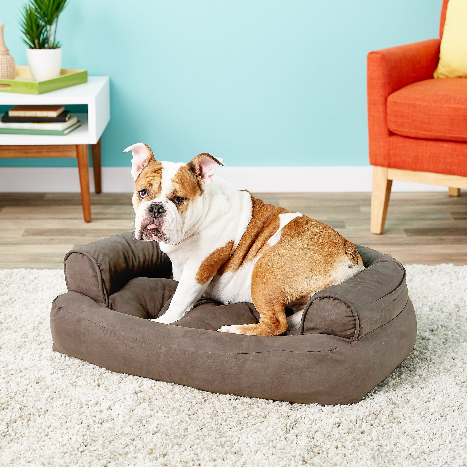 Snoozer Overstuffed Sofa Pet Bed Beauteous Overstuffed Luxury Dog Sofa Presenteddog Beds Comfort