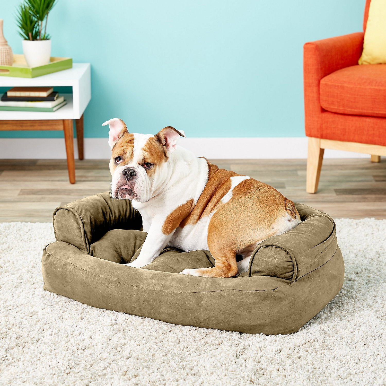 Snoozer Pet Products Luxury Overstuffed Dog Amp Cat Sofa