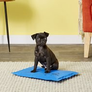 K&H Pet Products Coolin' Pet Pad Dog Mat, Small, Blue
