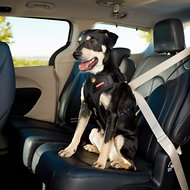 EzyDog Drive Dog Car Harness, Medium