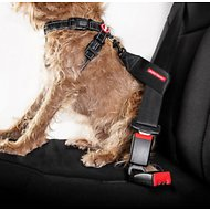 EzyDog Seat Belt Restraint, Black