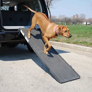 PetSTEP Folding Pet Ramp, Graphite